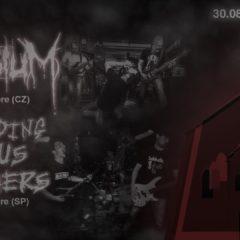 Elysium & Grinding Jesus Brothers na spoločnom koncerte tento piatok v Stropkove